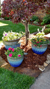 Pottery trio with landscaping and lighting