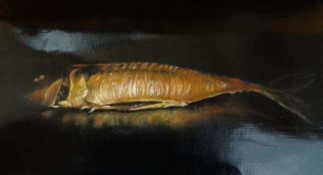 Makrill, oil on canvas, 50x30 S