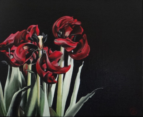 Withered tulips, oil on canvas,46x38