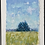 Thumbnail: Sapphire Pines