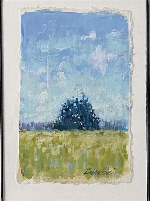 Sapphire Pines