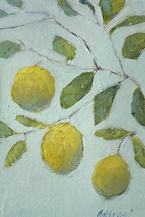Lemon tree, #1