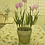 Thumbnail: Tulips on Tables