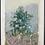 Thumbnail: Early Fall Pine Study
