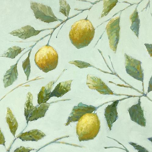 """Lemon Sorbet, #1"""