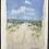 Thumbnail: Beach Path Study