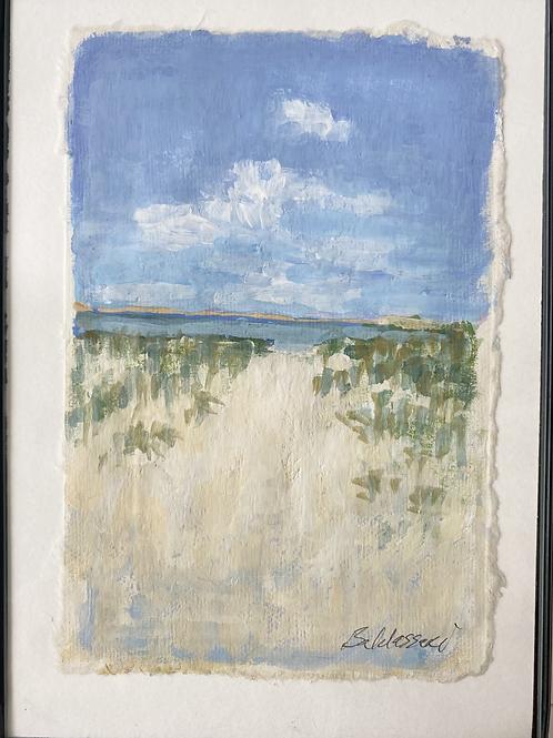 Beach Path Study