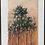 Thumbnail: Tree at Sunset Study