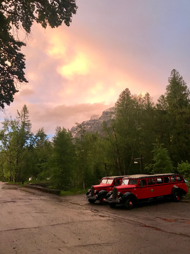 Historic red busses parked for the evening