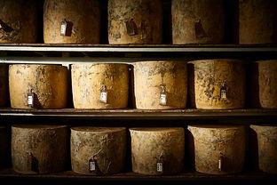 CheeseShelves (1).jpg