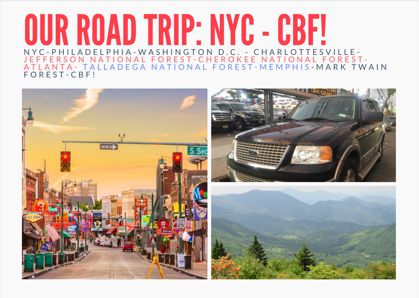 Road Trip Postcard NYC-CBF - Front