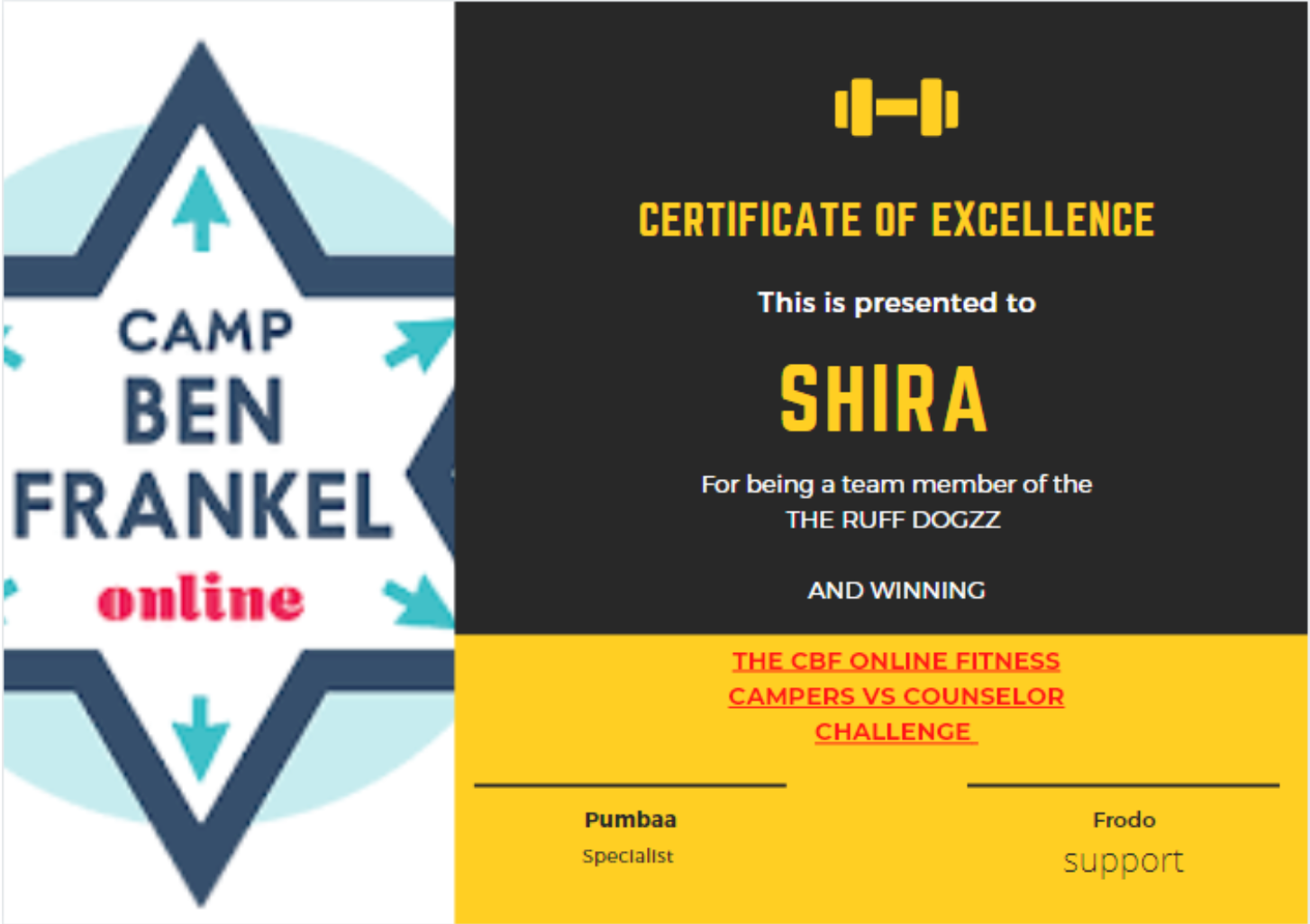 Shira - Certificate of Excellence
