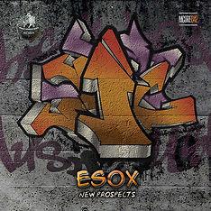 New Prospects EP  700.jpg