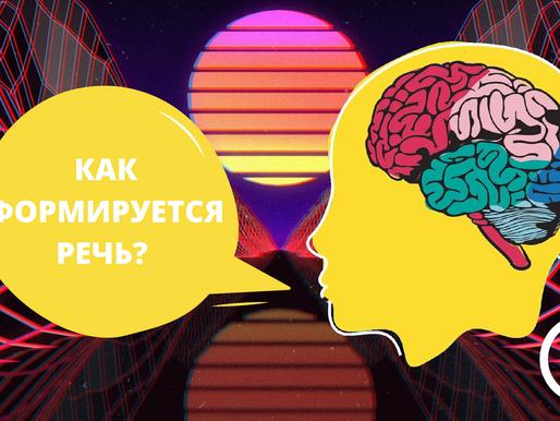 Как формируется речь у людей?