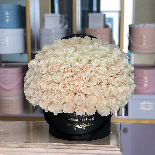 Signature 150 White Rose Box
