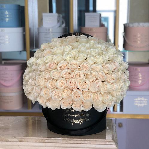 Signature 150 White Rose Box