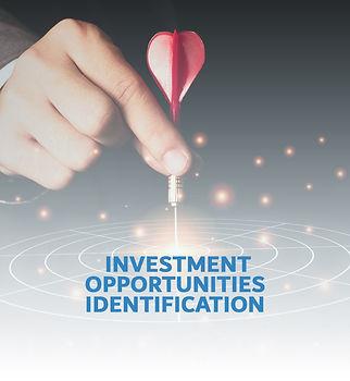 Investment-Opportunities-Identification_edited.jpg