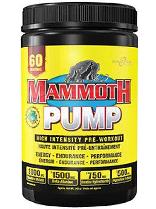 Mammoth PUMP 60 portions