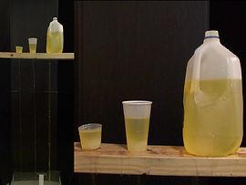 urinary.jpg