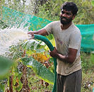 Organic Farming of Yuva Social Movement