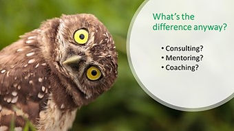 Difference between business coach, mentor and consultant