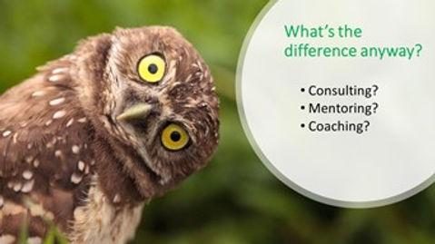 Coach,Consult,Mentor.jpg