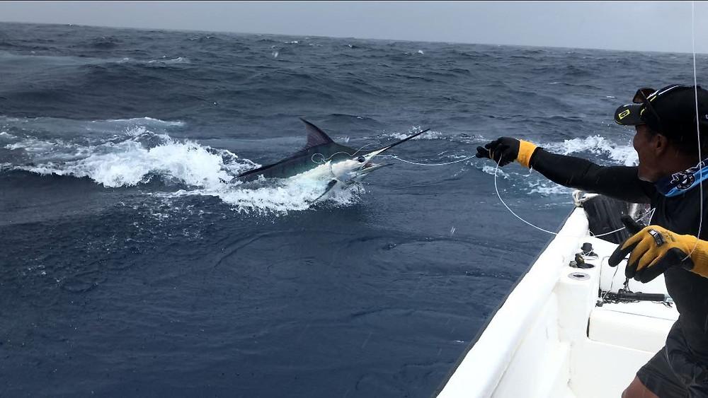 Pesca deportiva en Bahía Solano