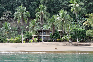 Playa Guadualito bahia Solano