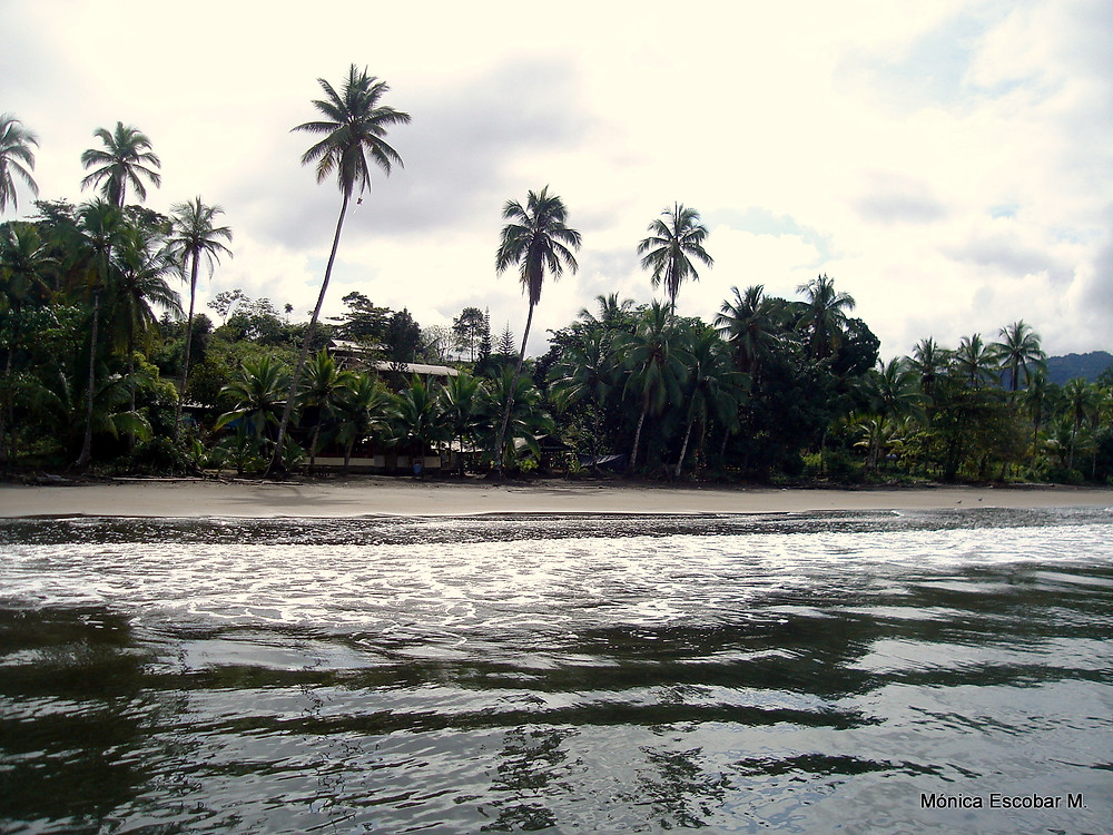 Playa de Potes- Bahía Solano