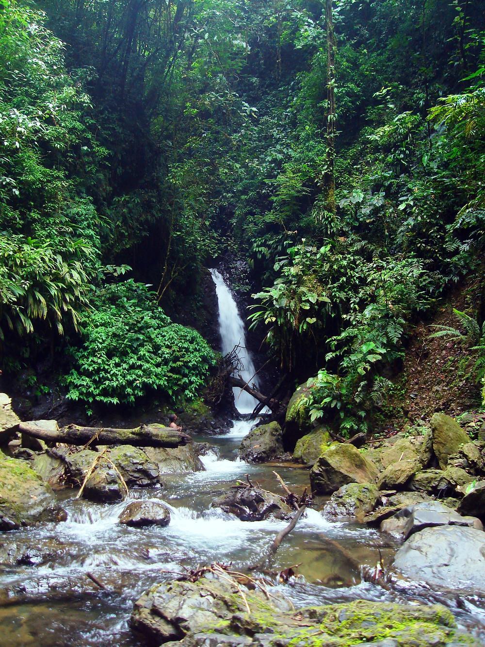 Salto de Chocolatal- Bahíasolanoaldia