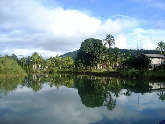 Vista del río Mecana en Bahía Solano