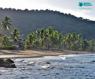 Bahía Solano, un destino que se reactiva