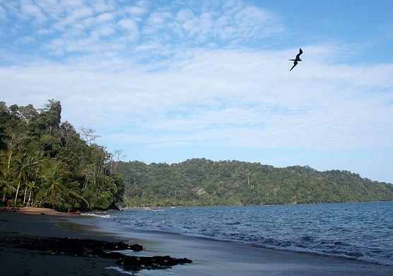 Huina-Bahia Solano