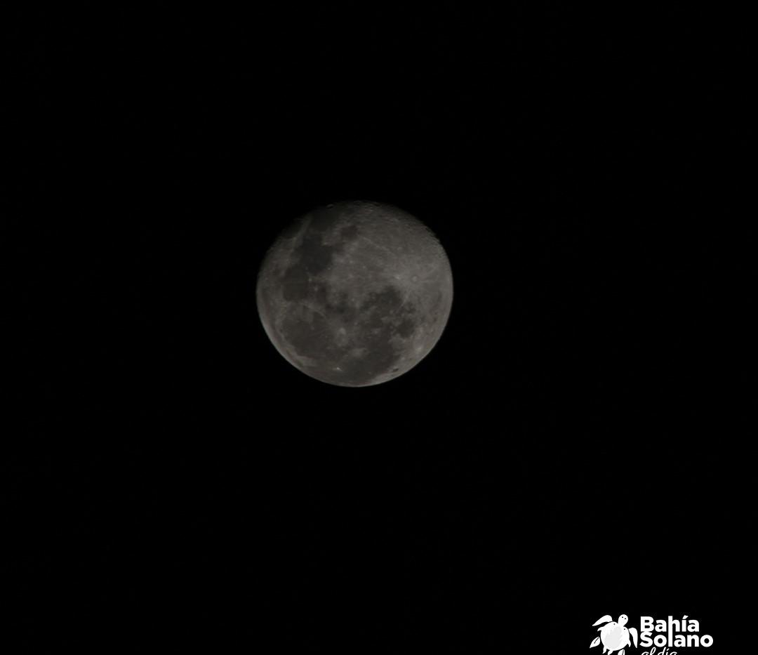 Luna 1.jpg