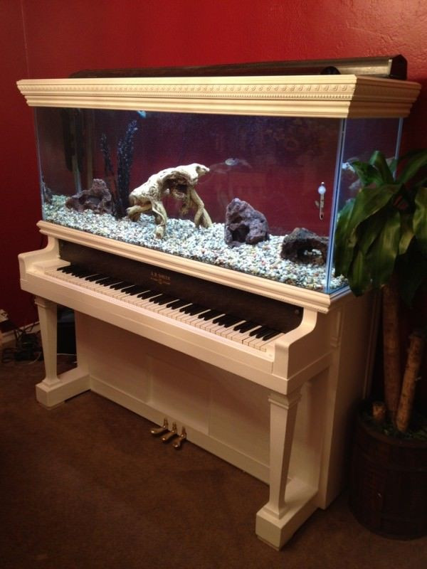 DIY Repurposed Piano Aquarium | Upcycling