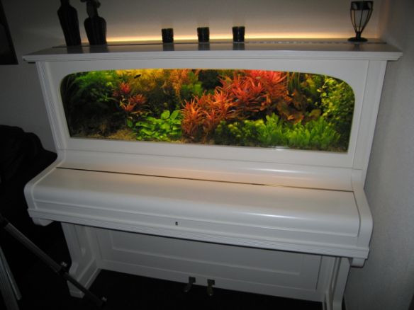 DIY Repurposed Piano Fish Tank | Upcycling