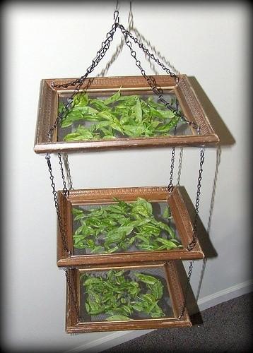 DIY Picture Frame Herb Dryer