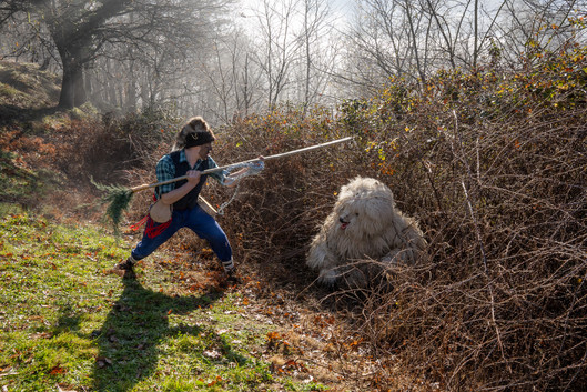 The Capturing of the Bear, La Vijanera, Silio, Spain, 2020