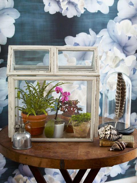Repurposed Picture Frame Terrarium