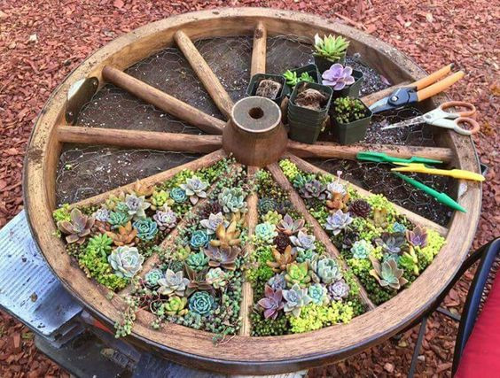 Upcycled Ship Wheel Herb / Succulent Garden
