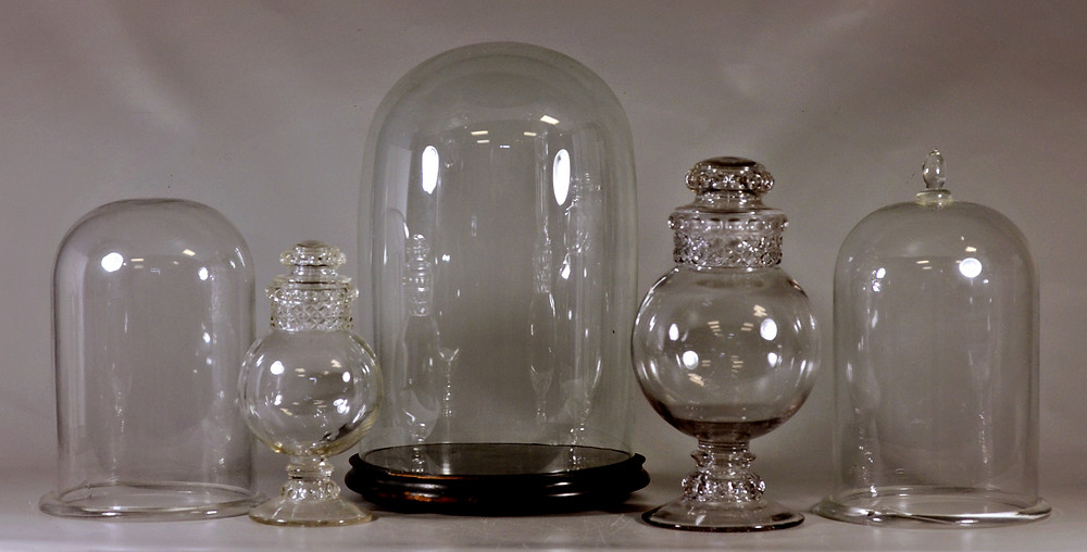 Bell jars can be used to create terrariums