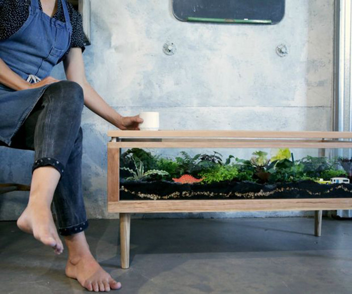 Glass Front Terrarium Coffee Table