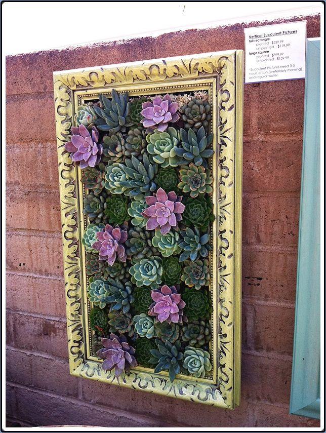DIY Picture Frame Wall Garden