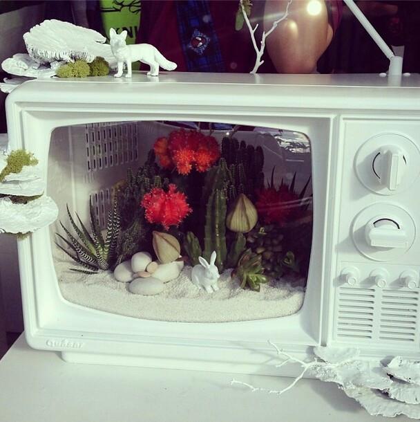 DIY painted oldschool television terrarium