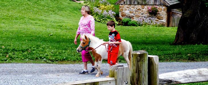 The Barn at Springbrook Farm | Bunch Auctions