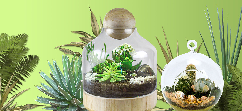 DIY Terrariums from auction upcycles