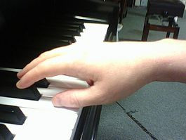 Natural hand position. Fingers are curved not curled