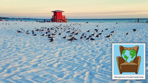 The Best Beaches In The Sunshine State Remain Unrestricted For The Armchair Traveler!