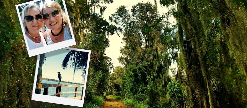Discover This Hidden Gem In Central Florida That's For FREE!