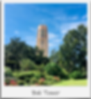 Bok Tower 2.png